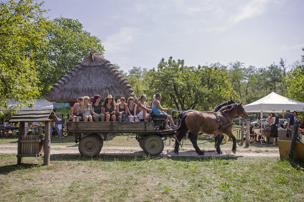 'Countryside Newcomers Festival', Zebegény, 23 – 26 August