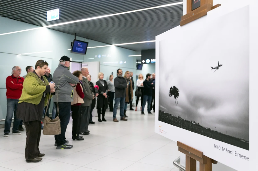 Mándi Emese Photo Exhibition, Budapest Airport