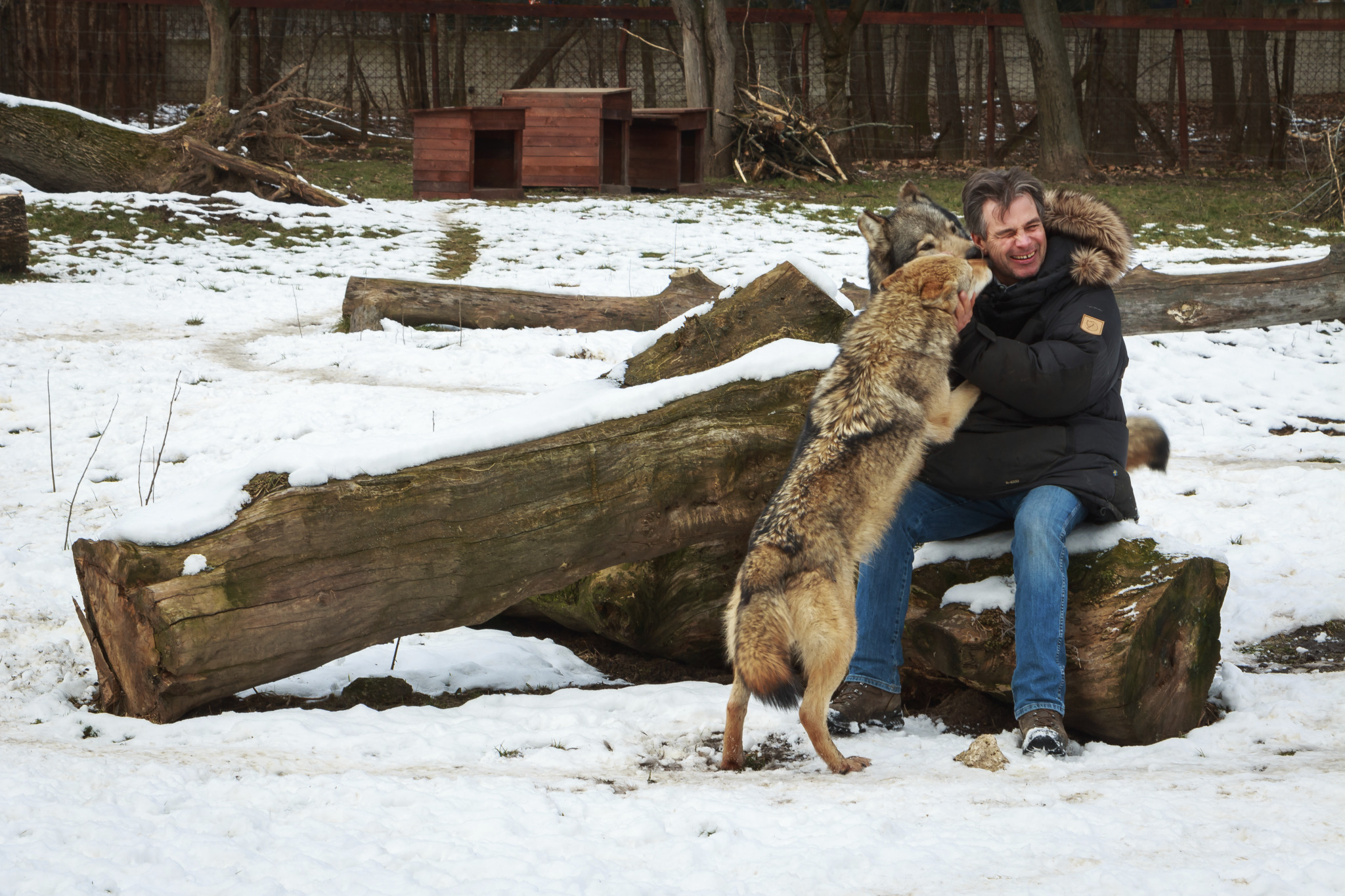Video: Hungarian Animal Trainer  Works With Hollywood's Stars