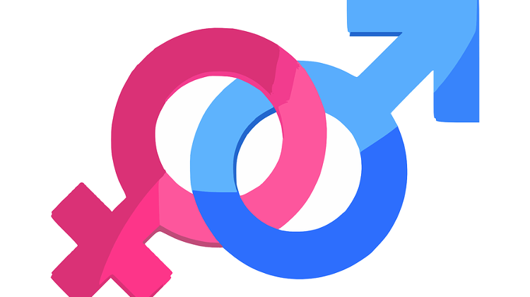 Local Opinion: Gender Studies Ban Seen As A Misunderstanding