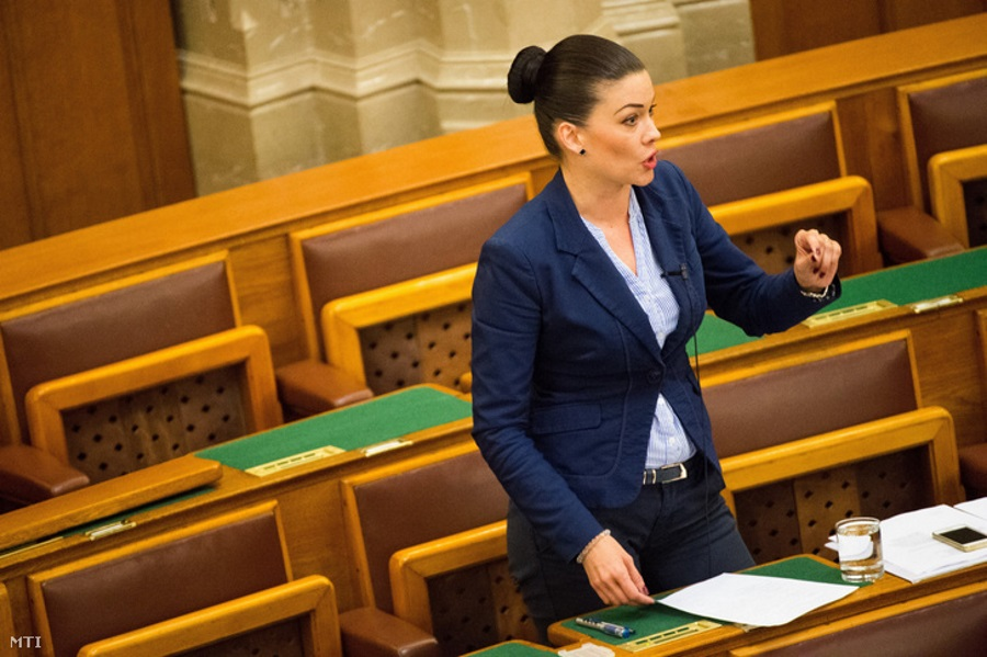 Demeter Elected Hungarian Opposition LMP Co-Leader