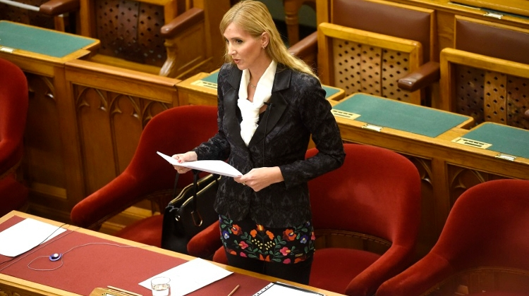 Hungarian Gov't Lacks Policy For Women Says Opposition