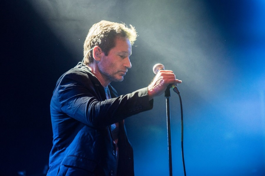 David Duchovny Concert, MOM Sport Arena Budapest, 11 February