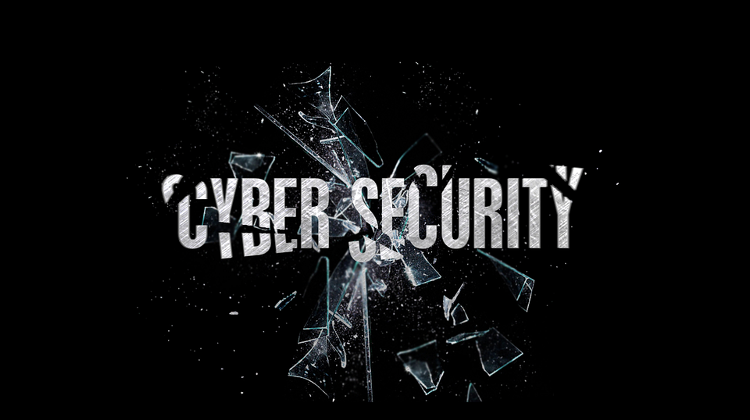 Cyber Attack On Government Website