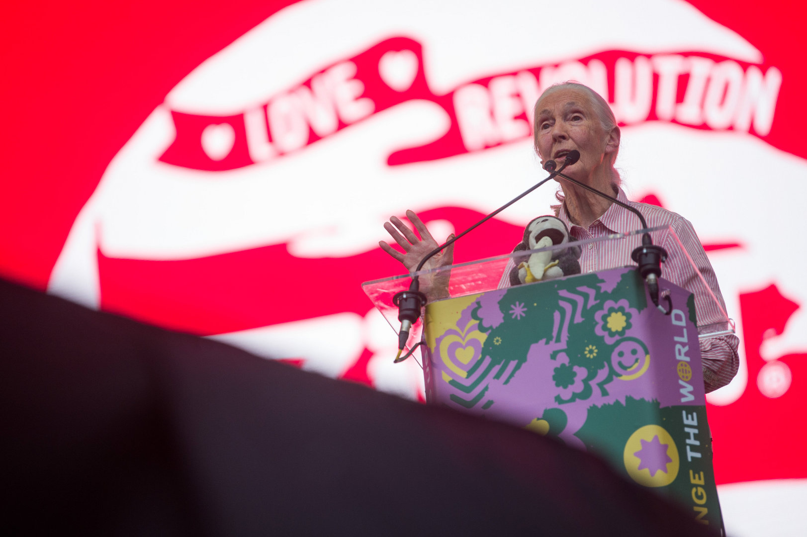 Video: Jane Goodall, UN Peace Messenger, Interviewed By British Ambassador Lindsay At Sziget