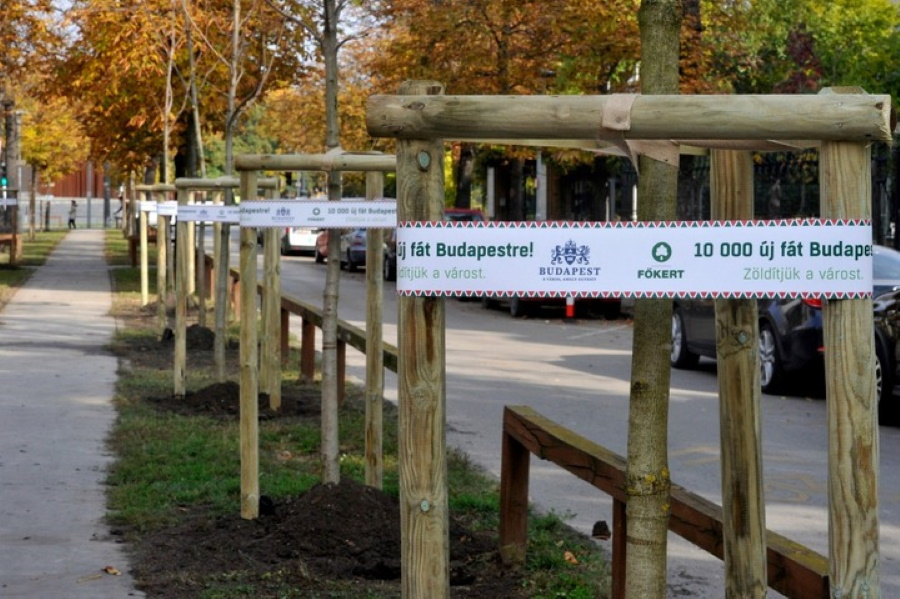 Mayor Tarlós: 10,000 Trees Planted In Budapest