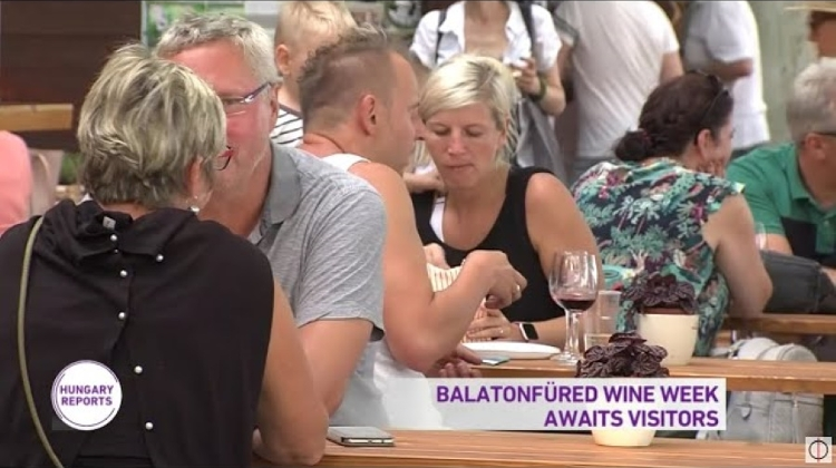 Video News: 'Hungary Reports', 25 August