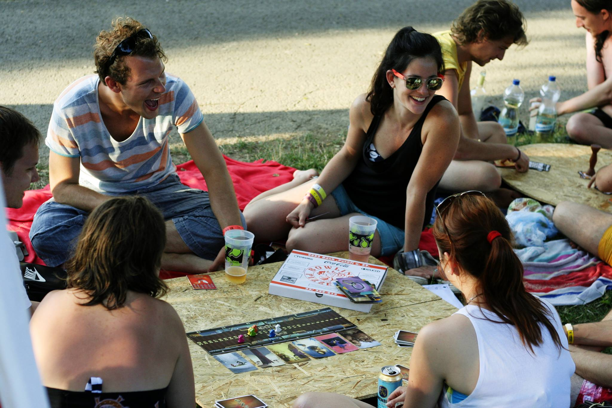 Board Game Picnic On Margaret Island