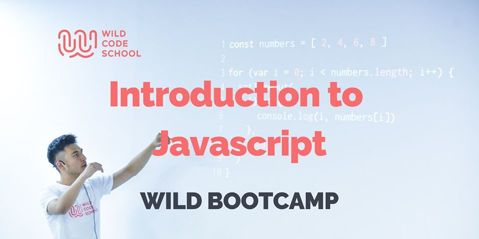 WILD Bootcamp - Introduction To JavaScript