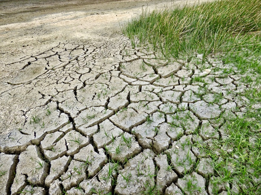 Record Drought Predicted For Summer