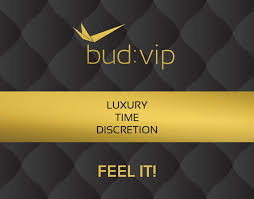 bud:vip - Personal Airport Service
