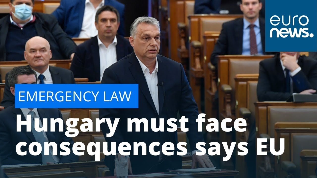 Video: MEPs Say Hungary Must Face Consequences For Emergency Law