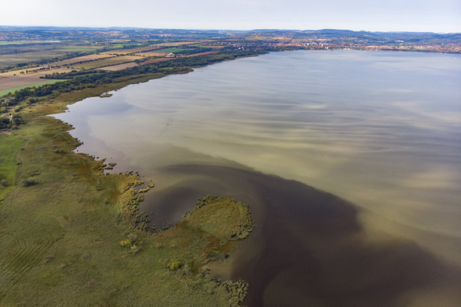 Summer Clean Of Lake Balaton Underway