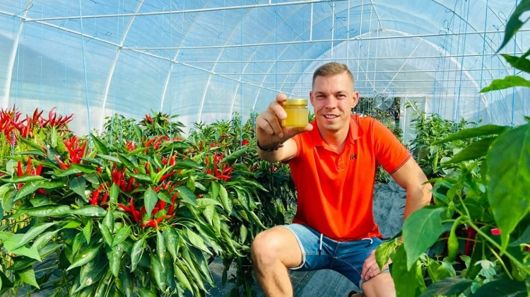 Hungarian Peppers Win International Awards