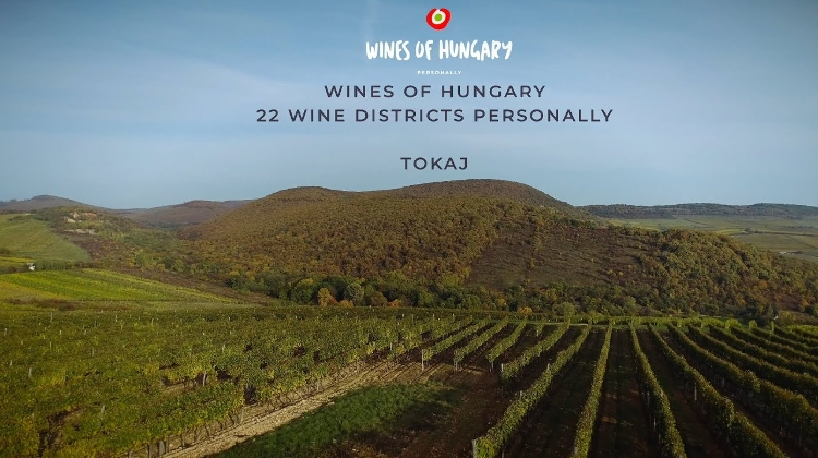 Video: Xploring Wine Districts Of Hungary – Tokaj
