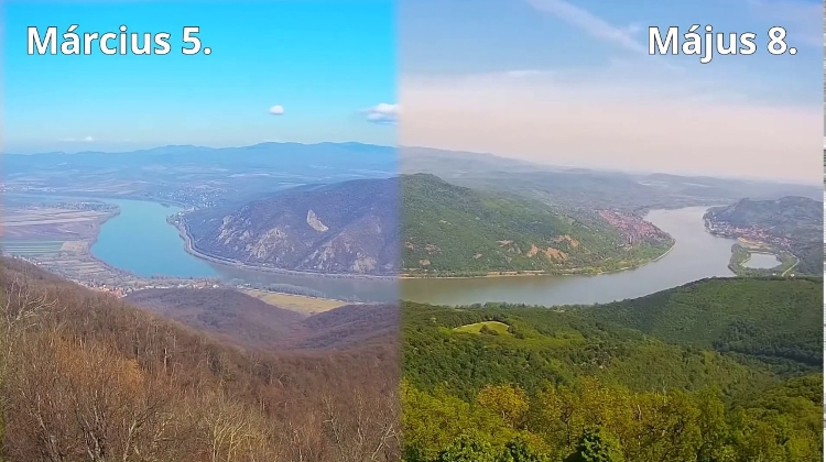 Video: How Danube Bend Recently Turned Green In Hungary