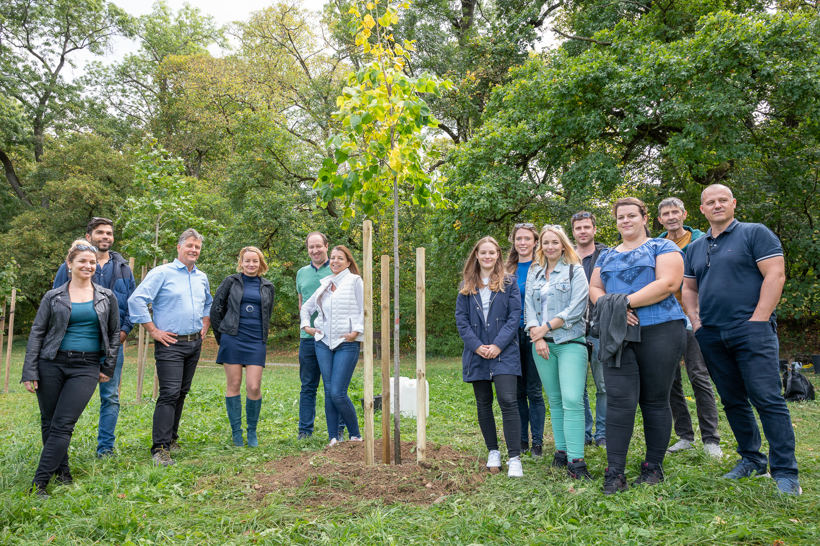 2020 Trees Planted By ATENOR In Budapest