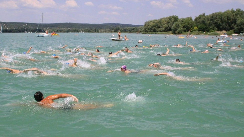 Cross-Balaton Swim Will Be Held This Saturday
