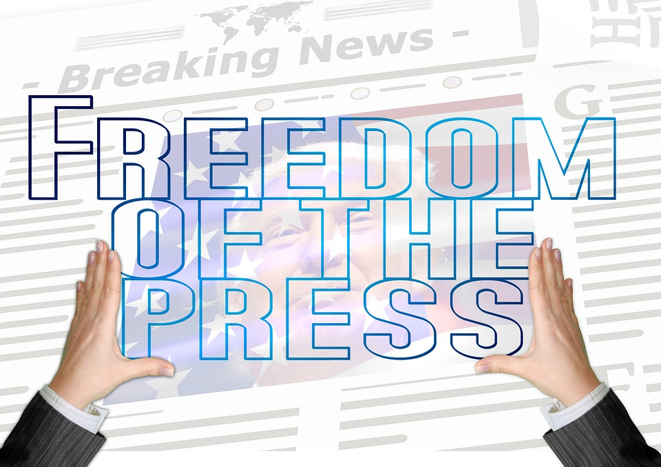 COE Commissioner Calls On Hungary To 'Restore' Press Freedoms