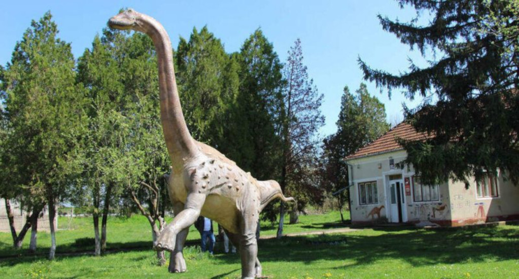 Dinosaur Site In Transylvania Rediscovered By Hungarian-Led Team