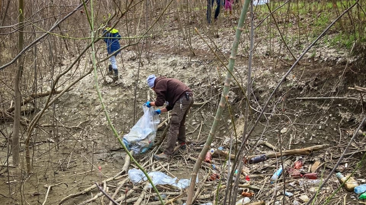 New Survey Shows Hungarians Aware & Care About Eco Issues