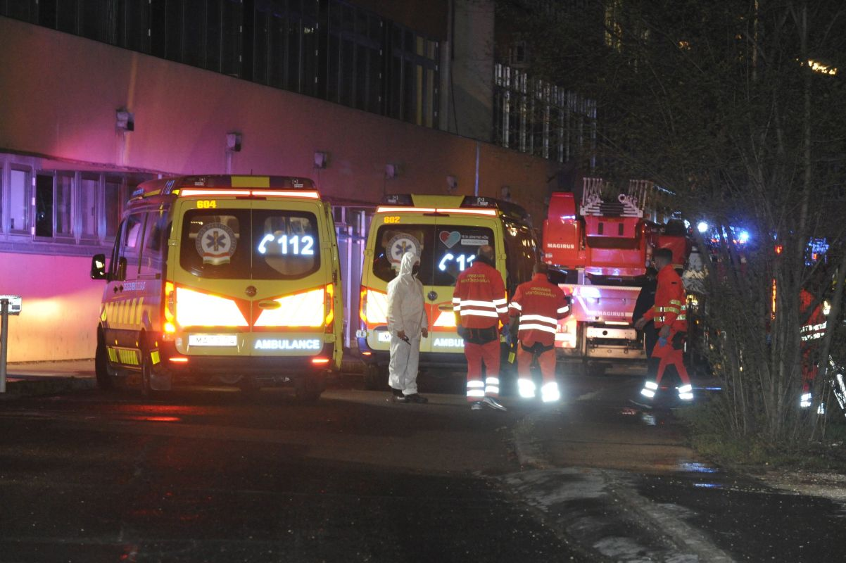 Fire Kills One At Budapest Hospital