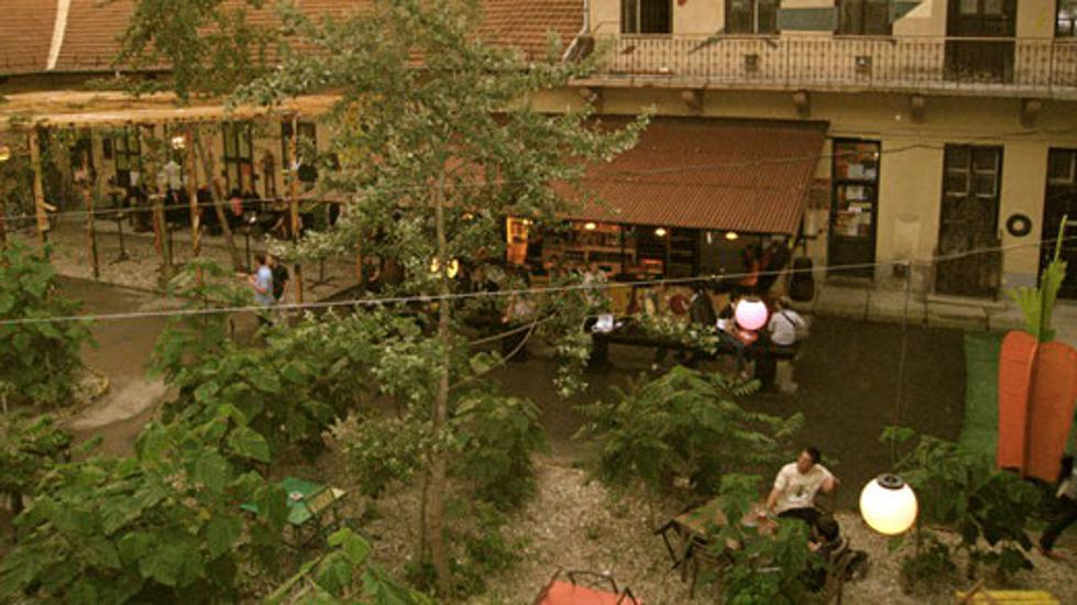 New Beer Gardens In Budapest By Treehugger Dan