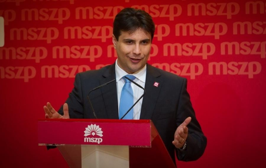 Hungarian Socialist Party President  Apologises For 2004 Referendum