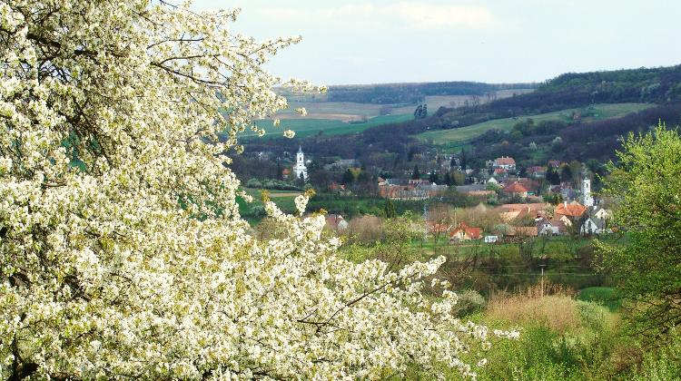 Xpat Opinion: Living In The Hungarian Countryside