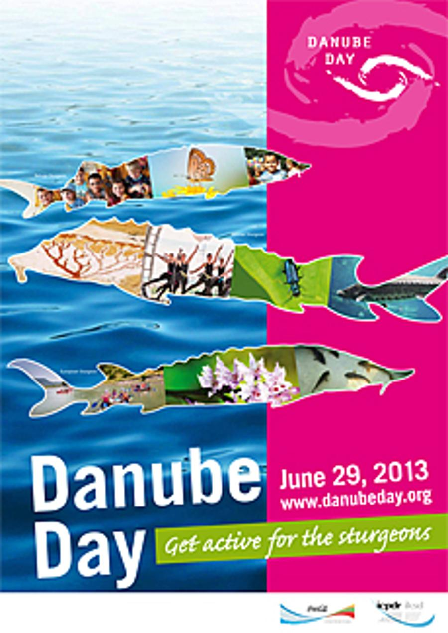 Danube Day 2013 In Hungary, 29 June