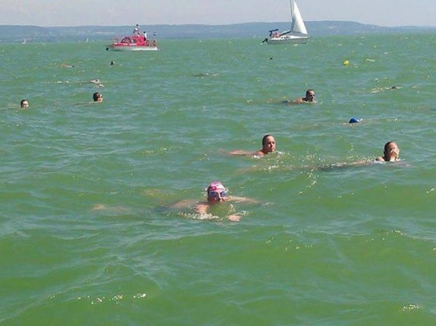 'Swimming Across Lake Balaton', By Jonathan Knott, British Ambassador To Hungary