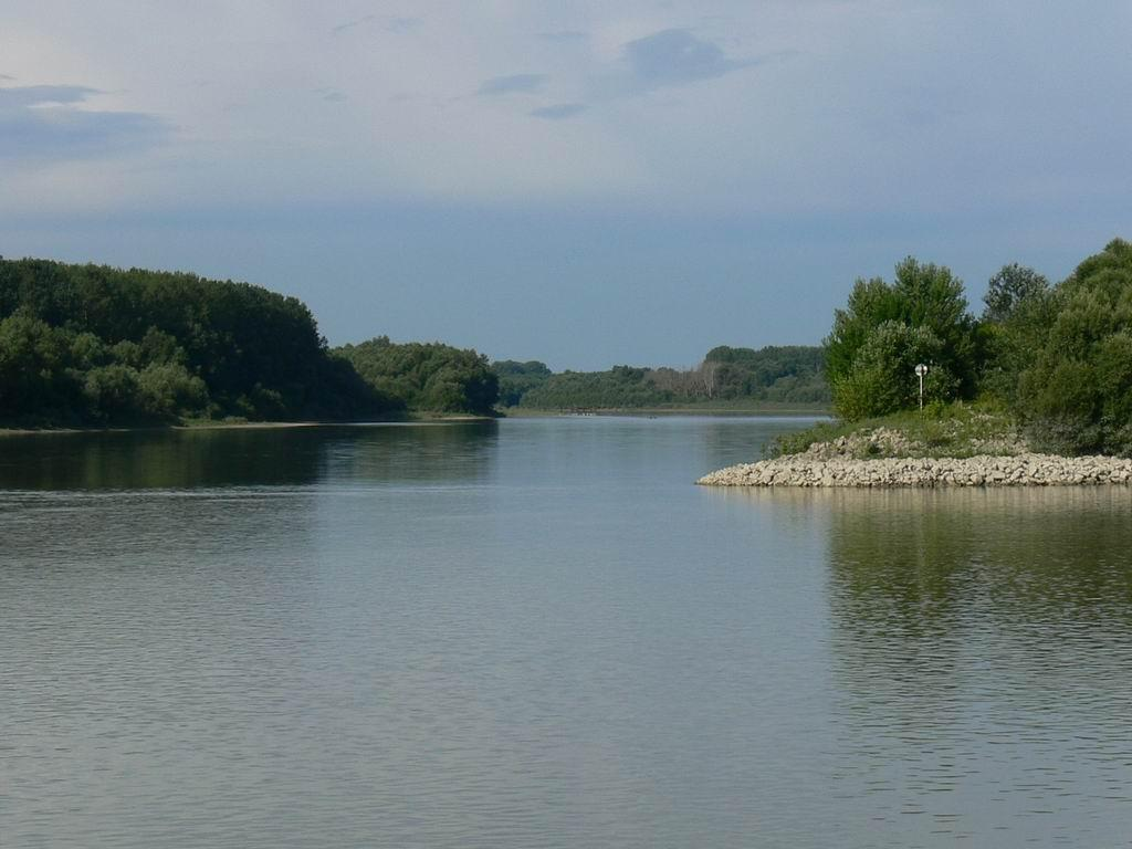 A WWF Restoration Project In Hungary Brings Life Back To A Danube Island