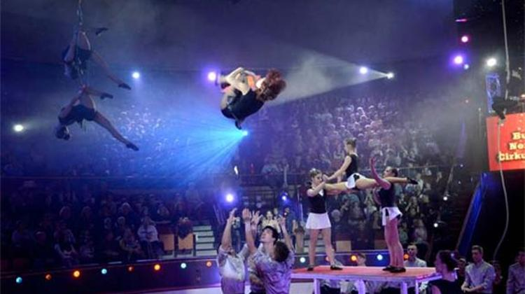 See What Happened @ 10th International Circus Festival In Budapest
