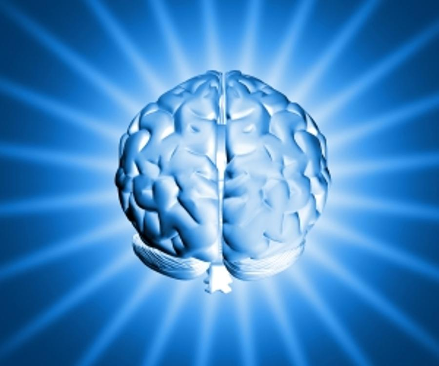 National Brain Research Project Starts In Hungary