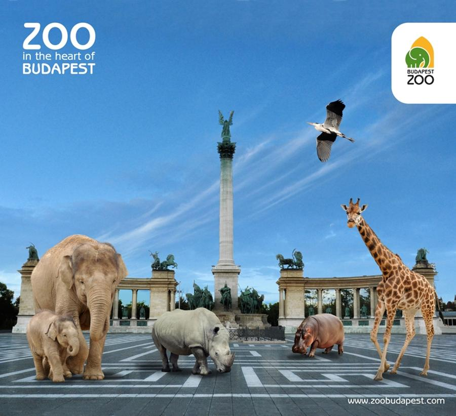 Leading Zoo Professionals Will Come Together In Budapest Zoo