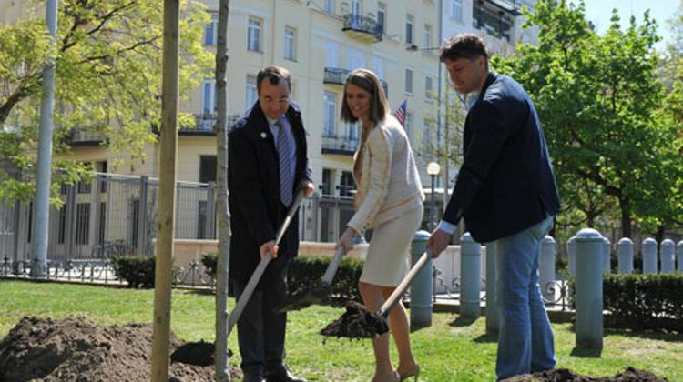 Tree Planting In Budapest In Honor Of Earth Day