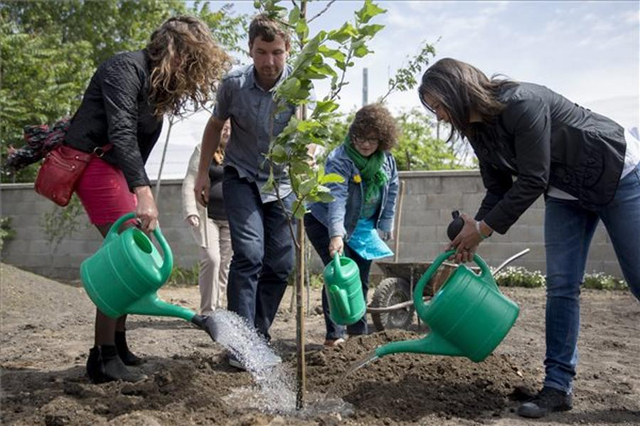 Budapest's Largest Community Garden Opens