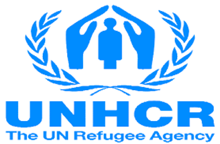 Hungary Asked By UNHCR Not To Rush Asylum Amendments