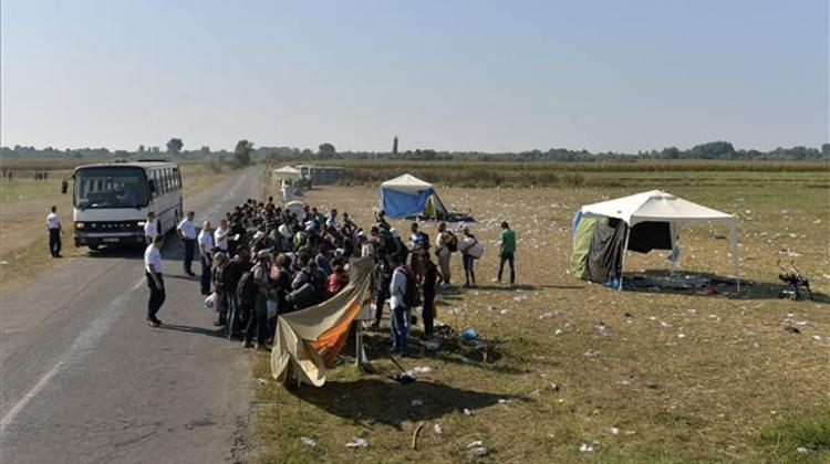 Order Must Be Restored Along Hungarian Border