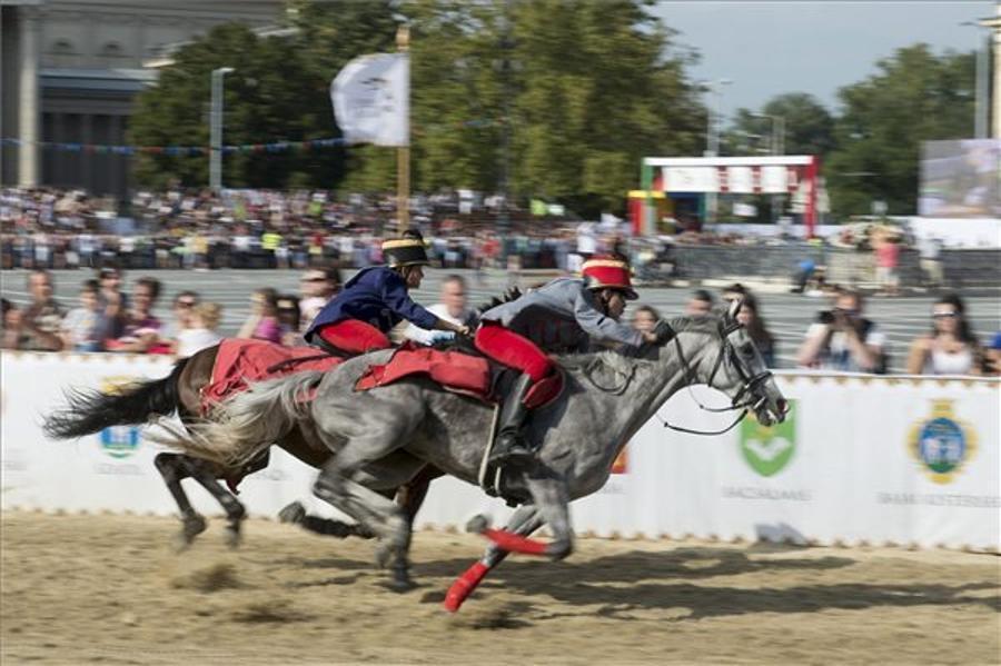 See What Happened @ National Gallop In Budapest