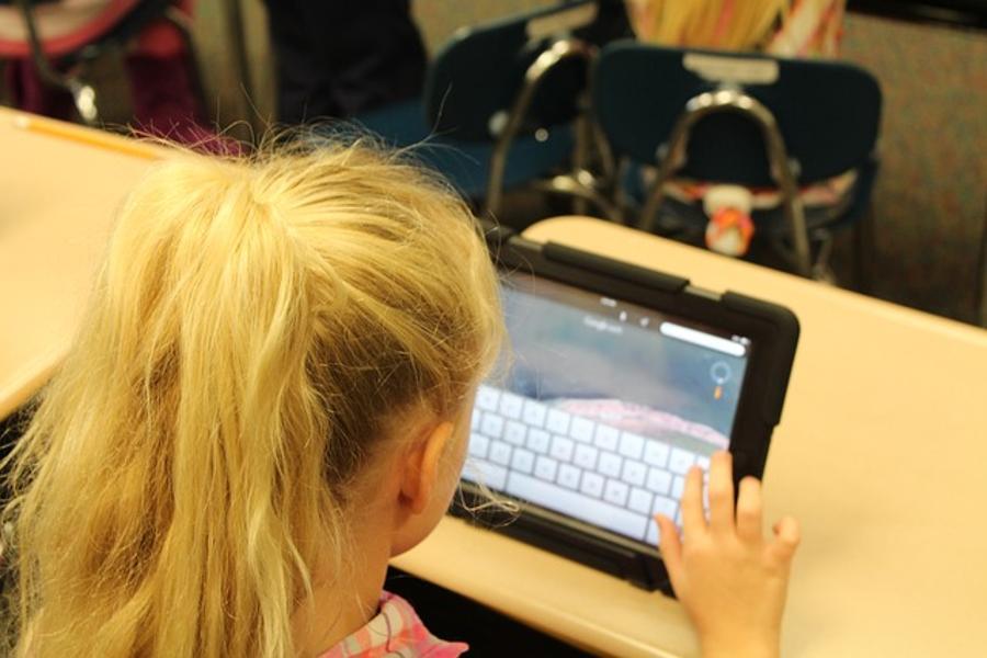 Hungary Last In Digital Literacy