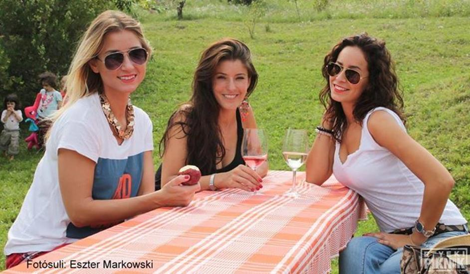 'Wine & Music Picnic', Etyek, 5 - 6 September