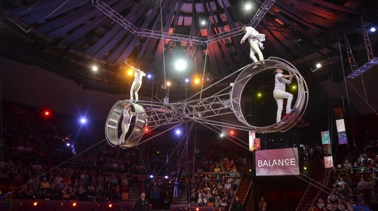 International Circus Festival, 7 - 11 January 2016