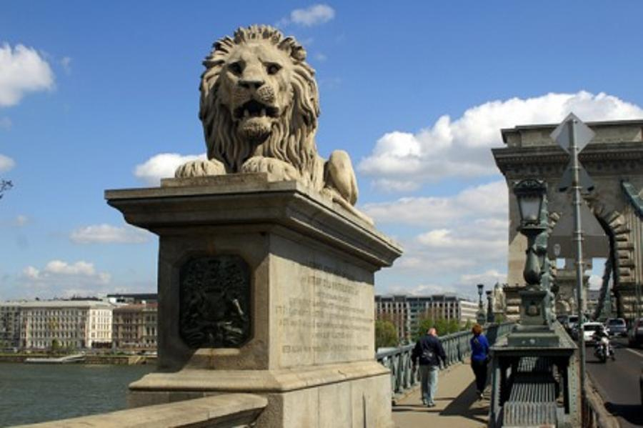 Uniquely Hungary:  The Lions Of Budapest, By Anne Zwack