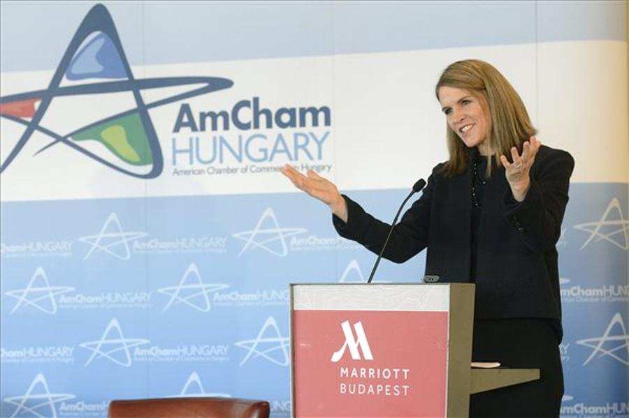 US Ambassador: Economic Ties With Hungary Strong