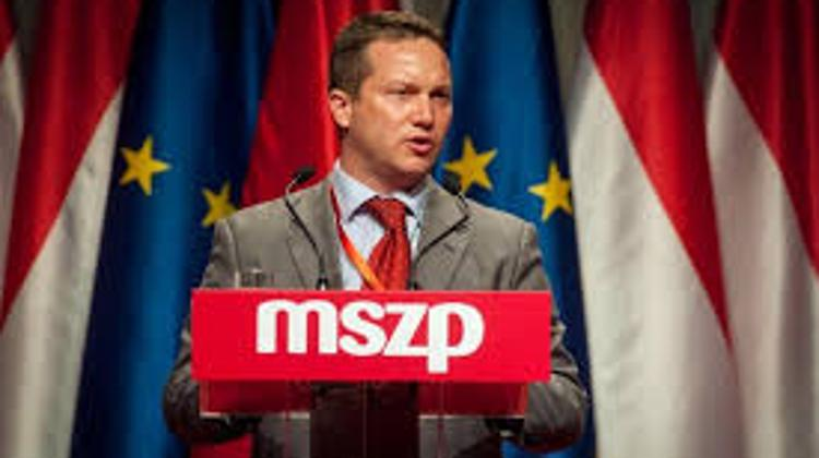 Socialist MEP: Govt Anti-Quota Ad Campaign 'Waste Of Money'