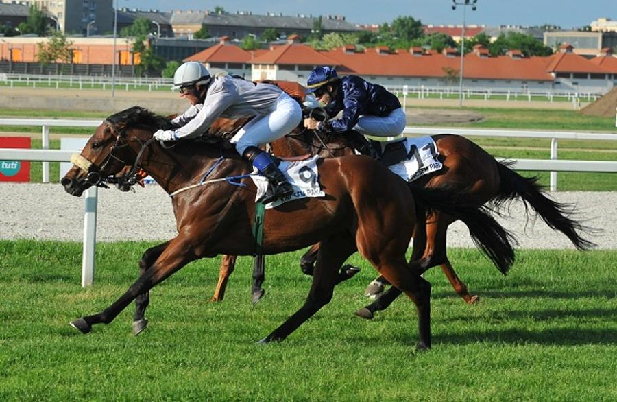 Xpat Review: Enjoying Horseracing In Budapest