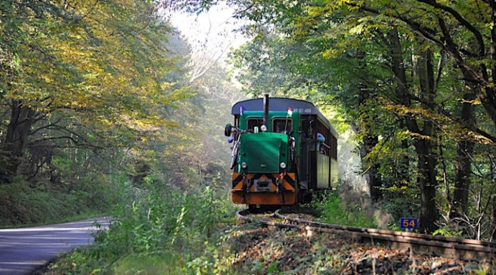 Hungary's Longest Narrow-Gauge Forest Railway Opens In The Börzsöny Hills