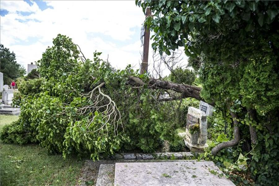 Early July Storm Damage Claims Could Reach HUF 1bn, MABISZ Says