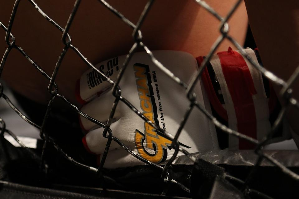 Hungarian Mixed Martial Arts Federation Abolished